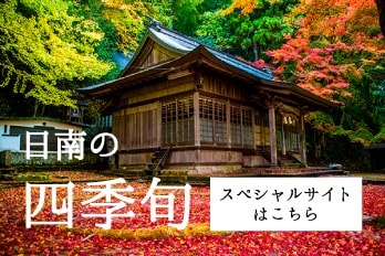 日南スペシャルサイト